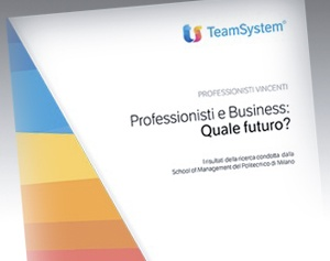 Guida Professionisti e Business